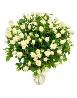 Bouquet of 101 white spray roses | 101 roses expensive