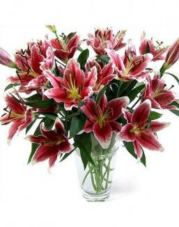 Bouquet of 51 pink lilies | Delivery and order flowers in Aktobe