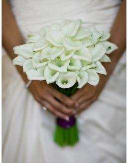 Bouquet of 25 white callas | Delivery and order flowers in Aktobe