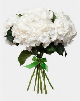 Bouquet of 25 white hydrangeas | Delivery and order flowers in Aktobe