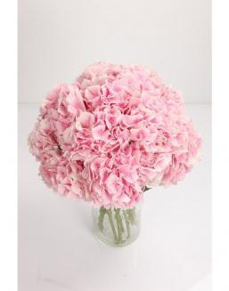Bouquet of 25 pink hydrangeas | Delivery and order flowers in Aktobe