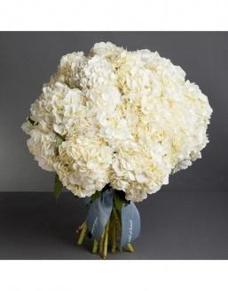 Bouquet of 15 white hydrangeas | Delivery and order flowers in Aktobe