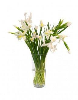 Bouquet of 15 white irises | Delivery and order flowers in Aktobe