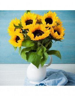 Mini-bouquet of sunflowers | Sunflowers