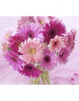Bouquet of 51 pink asters | Delivery and order flowers in Aktobe