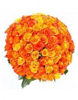 Bouquet 101 carrot roses | 101 roses expensive