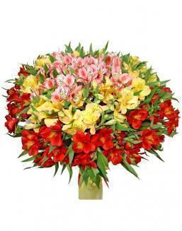 Bouquet of 15 alstroemerias | Delivery and order flowers in Aktobe