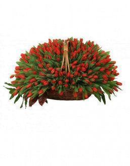 Basket 501 red tulips | Delivery and order flowers in Aktobe