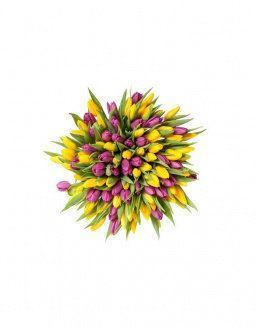 Mix bouquet 201 yellow and violet tulips | Delivery and order flowers in Aktobe