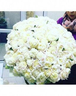 The dream embodiment a bouquet of 151 peonies | Delivery and order flowers in Aktobe