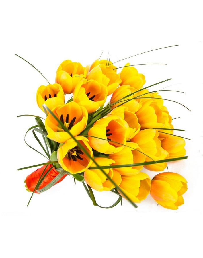 Bouquet of 25 yellow tulips